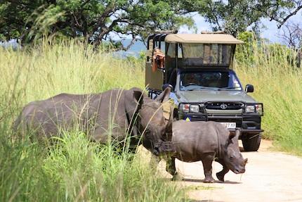Afrique du Sud – Voyage sur mesure