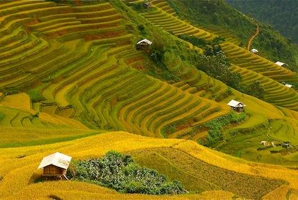 Vietnam – Voyage Photo au Coeur des rizières du Nord