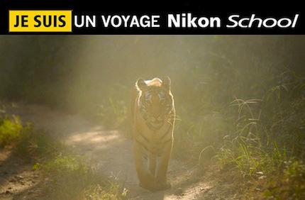 Inde – Voyage Photo Nikon School «A la rencontre des tigres du Bengale»