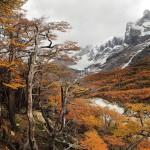 Patagonie voyage photo