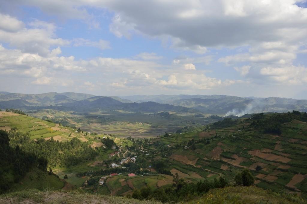 Ouganda «Gorilla Tracking» par Albi
