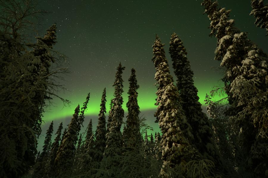 Voyage Photo  Laponie «Sous les aurores boréales  et au cœur des paysages polaires»