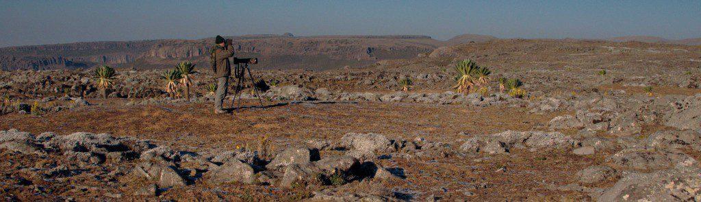 Ethiopie – Voyage découverte,  observation et photographique
