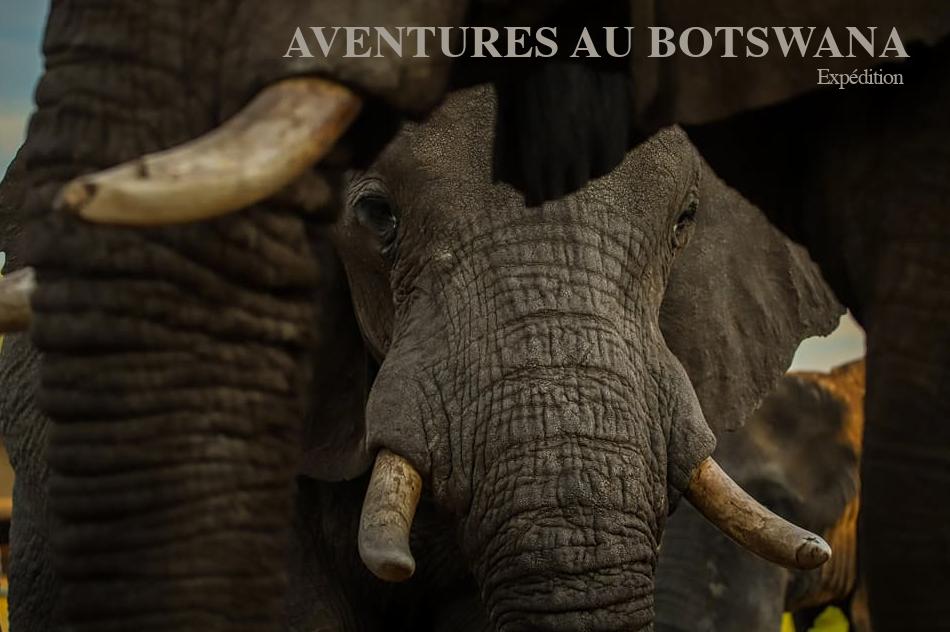 Botswana – Aventure 4×4 en autonomie